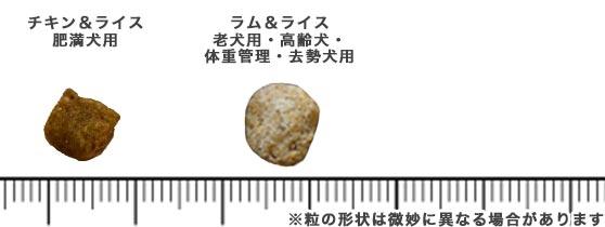 ホリスティックレセピーのキブル(粒)の比較