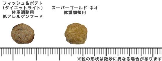 森乳スーパーゴールドのキブル(粒)の比較